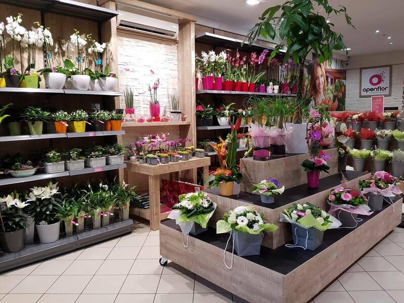fleuriste loos magasin (4)
