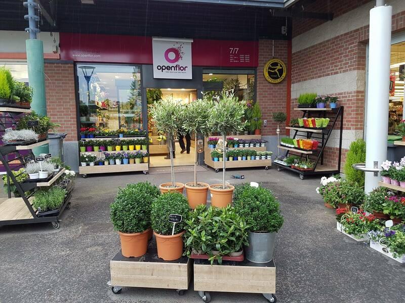fleuriste loos magasin (5)