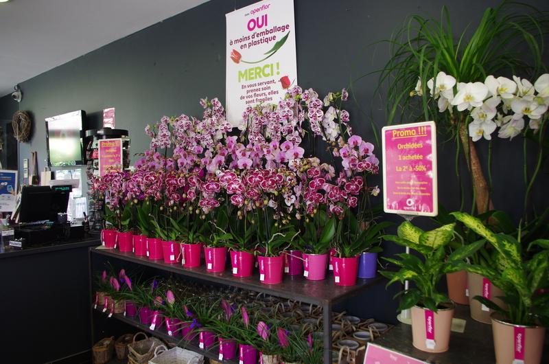 Fleuriste Bondues Openflor 3 (1)