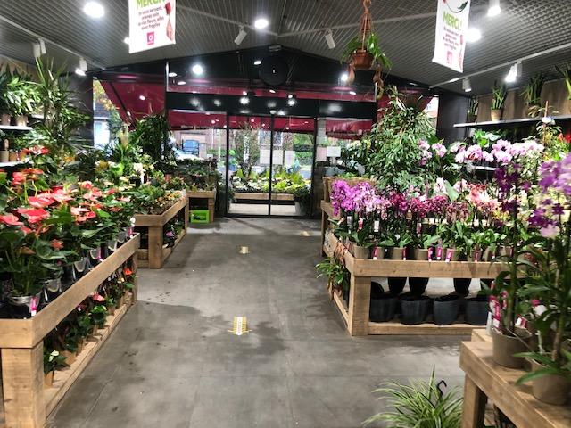 Fleuriste Lambersart Openflor (1)