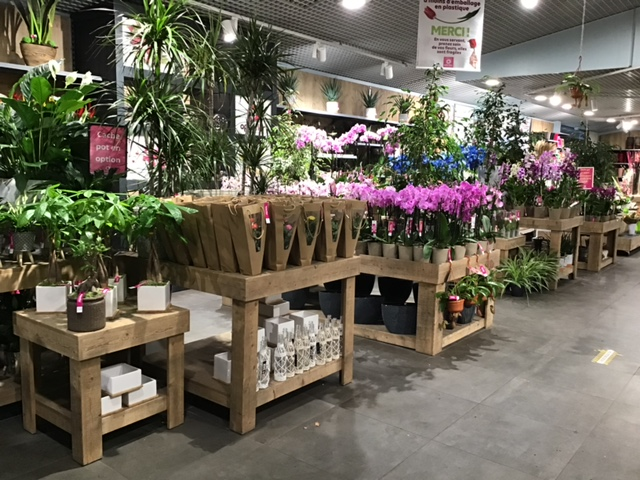 Fleuriste Lambersart Openflor (4)